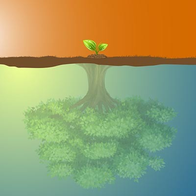 How IT Benefits a Small Business' Growth Potential